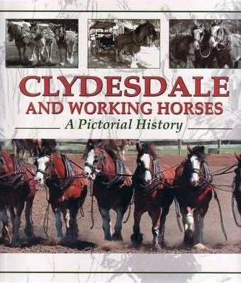 Clydesdale and Working Horses