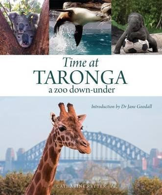 Time at Taronga a zoo down-under