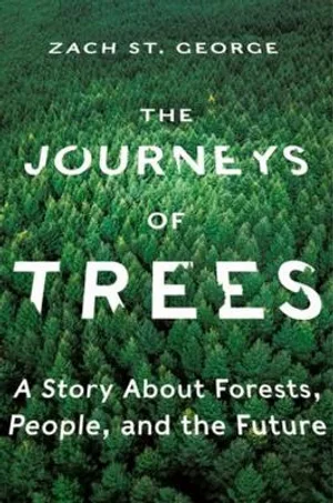 The Journey Of Trees