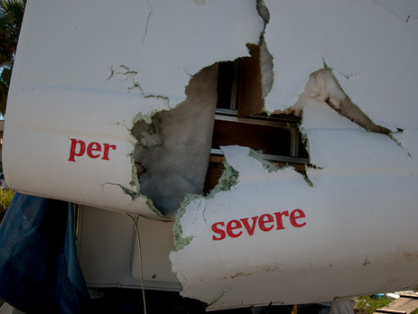 per severe (close up)