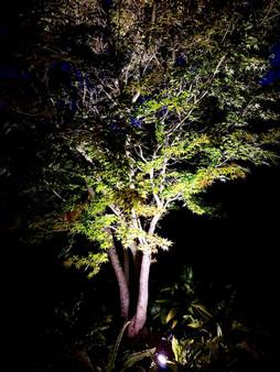 Éclairage individuel | Pottu&Seitz SA
