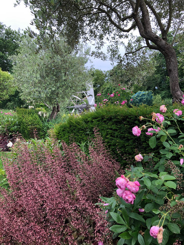 Massif fleuri | Pottu&Seitz SA