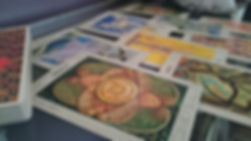 Psychic & Tarot Card Readings