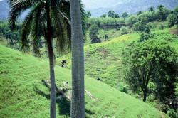 MBK Dominican Republic