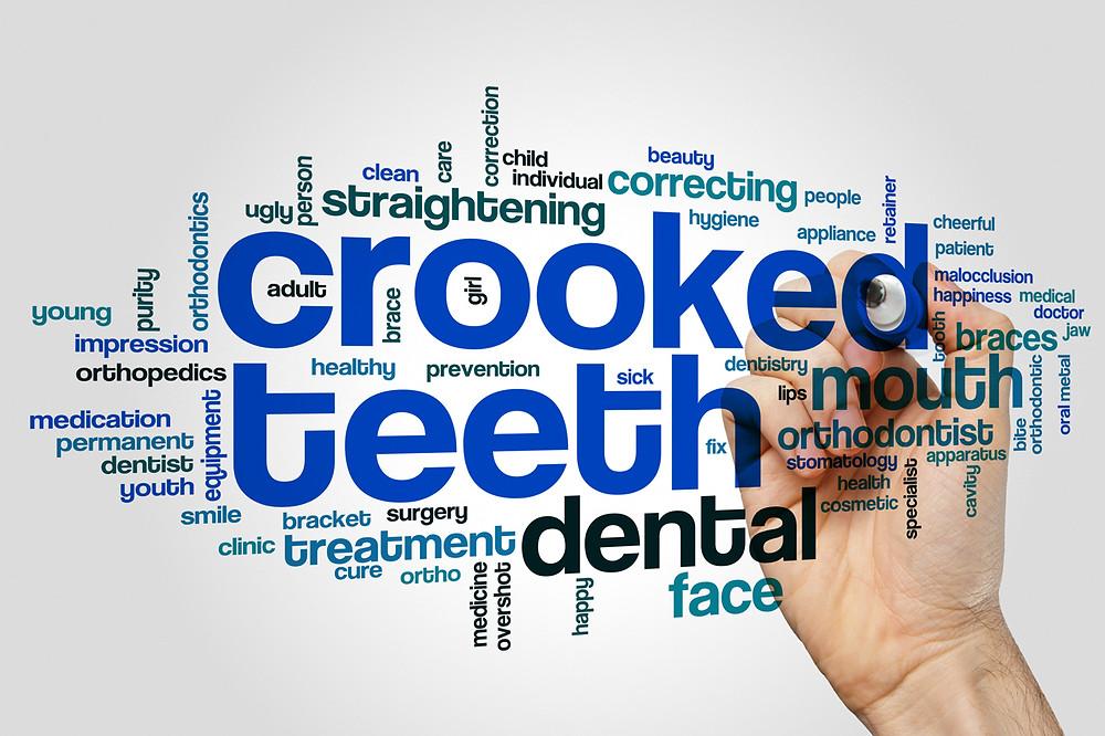Jungle Roots Children's Dentistry & Orthodontics