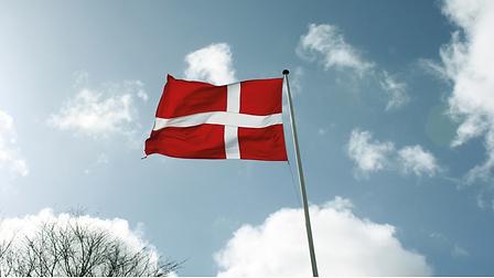 flag dk.PNG