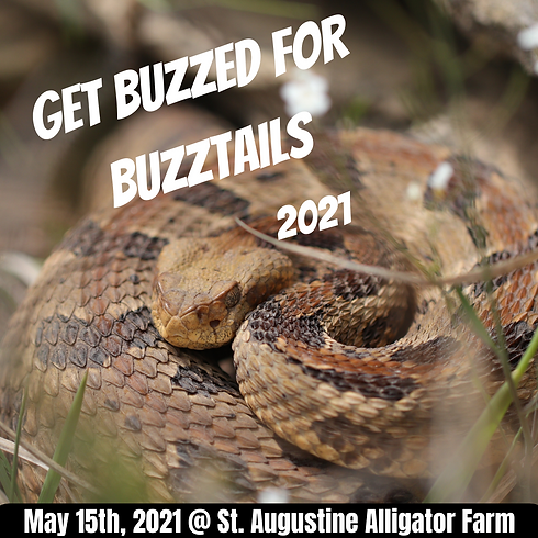 Get Buzzed for Buzztails.png