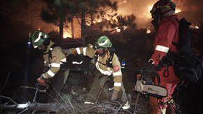 Urgente: Dan por controlado el incendio de Sierra Bermeja, en Málaga