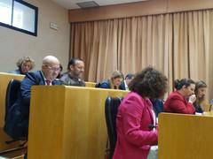 El pleno aprueba la concesión de ayudas a la ciudadanía para facilitar el pago del IBI por valor de