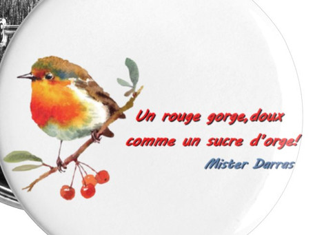 Petits badges Rouge Gorge (25 mm) - Mister Darras