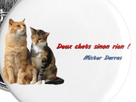 Petits badges Chats (25 mm) - Mister Darras