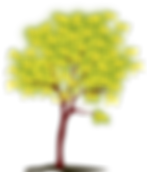 tree-1294129_1280.png