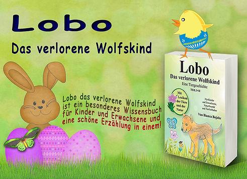Oster_Banner_Lobo_2.jpg
