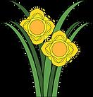 daffodils-5364692_1280.png