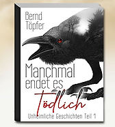 Book_Homi_Manchmal_endet_es_toedlich.jpg