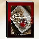 Book_Homi_Salwidizer_1.jpg