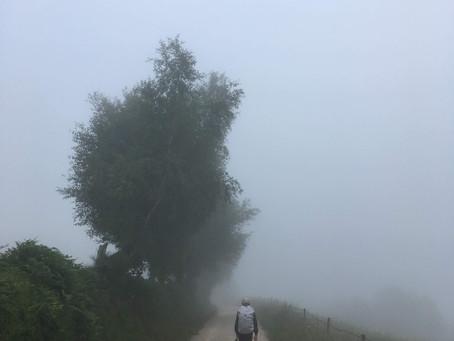 Anamnesis: A Pilgrim's Reflection