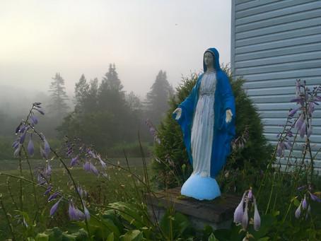 April 26th Update: Information for Pilgrims