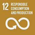 Responsible Consumption and Production.p