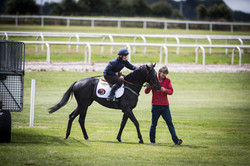 2-year-olds on the Curragh