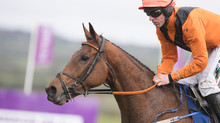 Alpha Male wins the Bishopscourt at the Punchestown Festival