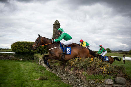 Punchestown Festival Results 2019