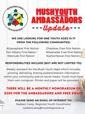 Mush Youth Ambassador - Update