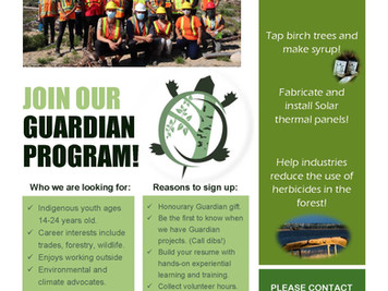Guardian Program