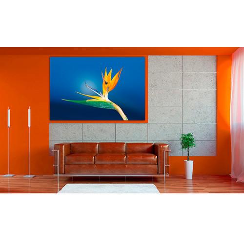 Decoracion con cuadros grandes raybre art modernos - Cuadros baratos ikea ...