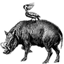 cg-logo-small.png
