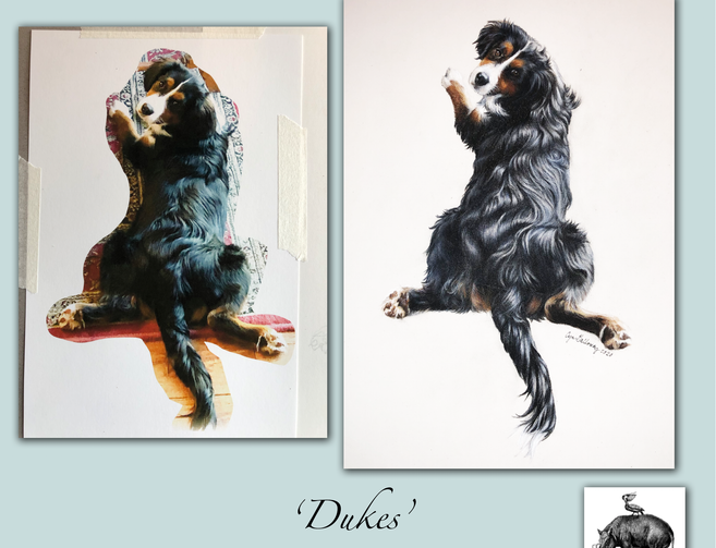 portrait-before-after-dukes.png