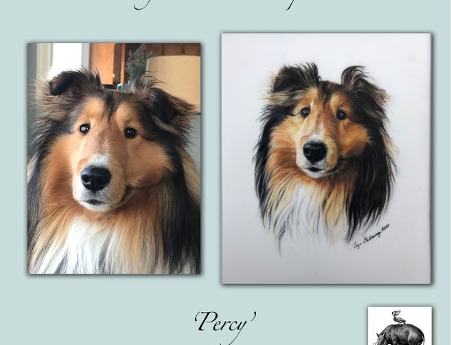 portrait-before-after-percy copy.png