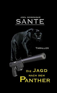 Panther7.jpg