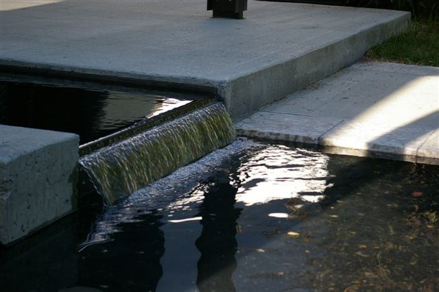 Church Pond