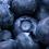 Thumbnail: Blueberry (Cotton or Tencel)