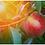 Thumbnail: Orchard Sunrise (Cotton or Tencel)