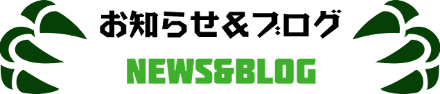 newsblog.png