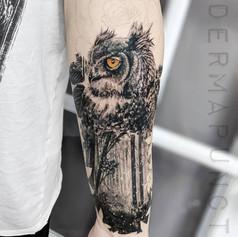 best owl tattoos, dermapunct.jpg