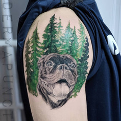boston terrier tattoo, dermapunct.jpg