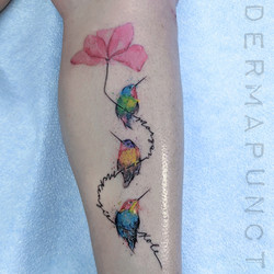 watercolor hummingbirdslite.jpg