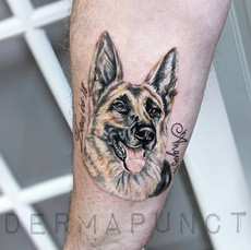 german shepard tattoo, dermapunct.jpg