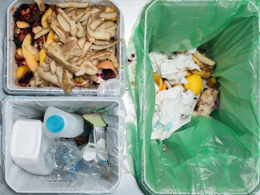 How to segregate different types of household waste?