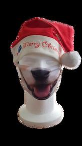 Bonnet de père Noël 19.90.-