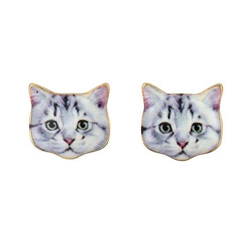 Silver Tabby Stud Earrings