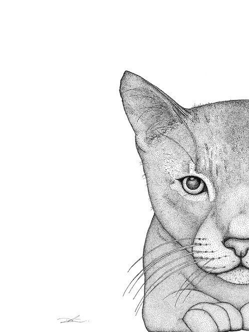 Catherine the Cat - Dots by Donna