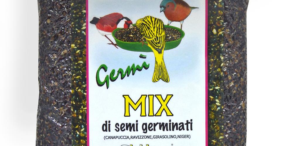 Germì | Mix di semi germinati