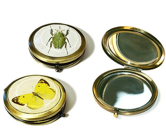 Schmetterling Gelb und Käfer Grün