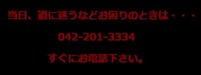 東京都東村山市|トトロの森のヒーリングサロンWASBY|アデプトプログラム|WASBY電話番号