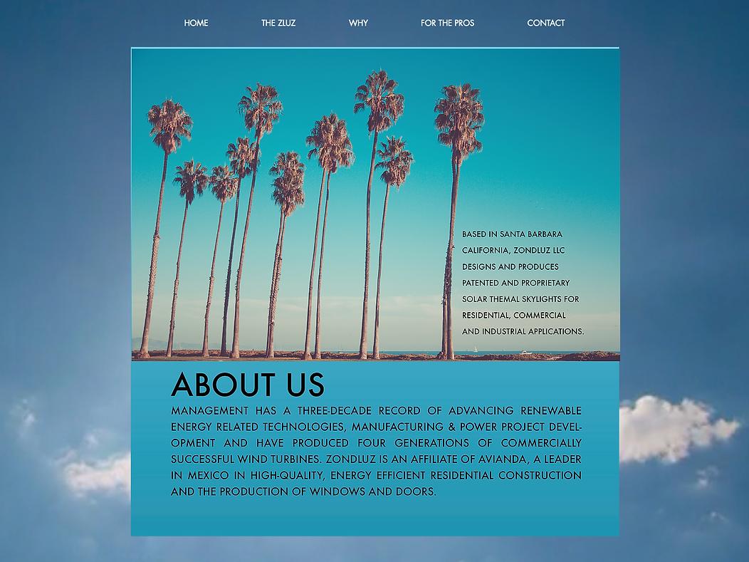 ZLUZ website screenshot