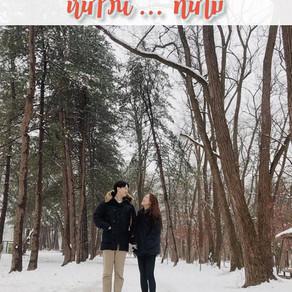 หนาวนี้...ที่นามิ (Nami in winter)
